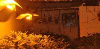 Otkrivena laboratorija marihuane |Foto: MUP