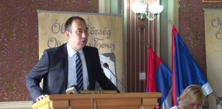 Vuk Radojević | Foto: Saša Marić