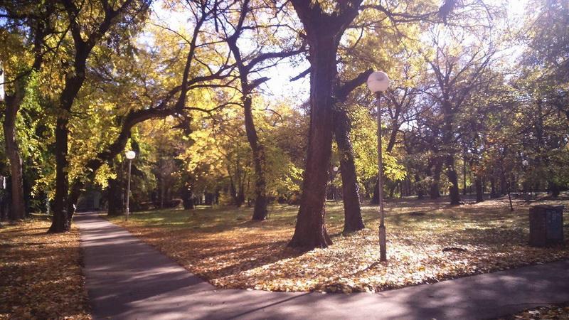 Veliki park u Temerinu mami posetioce u jesen