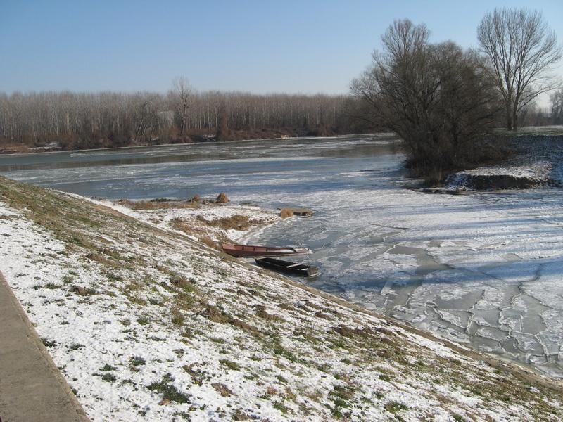 Ušće kanala u Tisu većim delom zaleđeno   Foto: Vlastimir Jankov