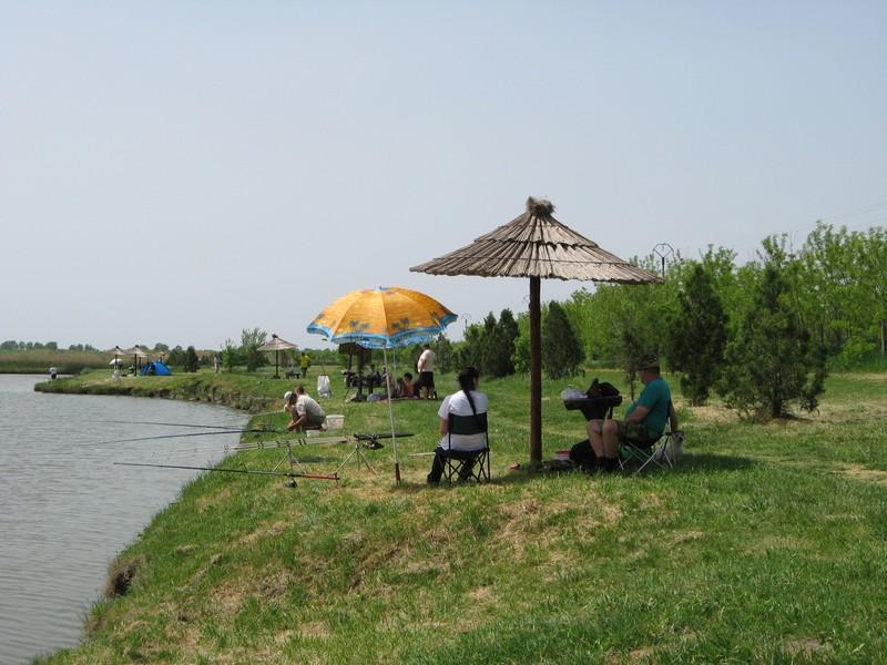 Ribnjak nudi svoje draži   Foto: Vlastimir Jankov