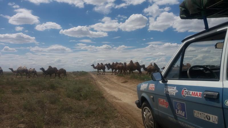 Oprez - kamile na putu