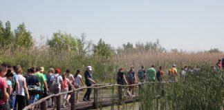 Sa posete Specijalnom rezervatu prirode Zasavica | Foto: Vlastimir Jankov