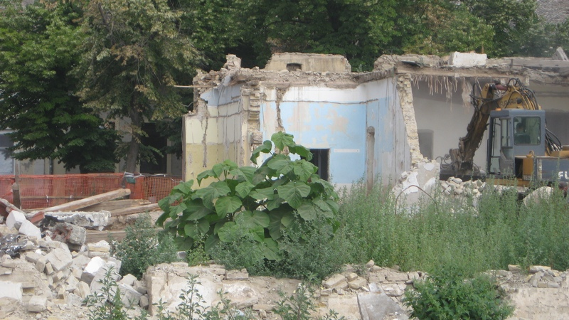 Pogled na rušilište iz dvorišta Doma zdravlja | Foto: Vlastimir Jankov