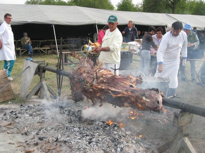 Juneće meso za ražnja nije dočekalo sumrak   Foto: Vlastimir Jankov
