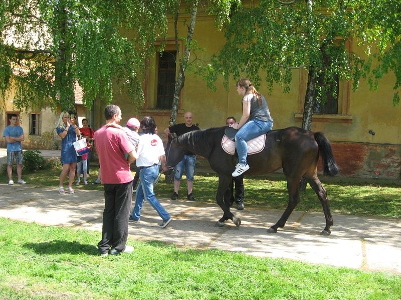 Rekreativno jahanje je omiljena zabava | Foto: Vlastimir Jankov