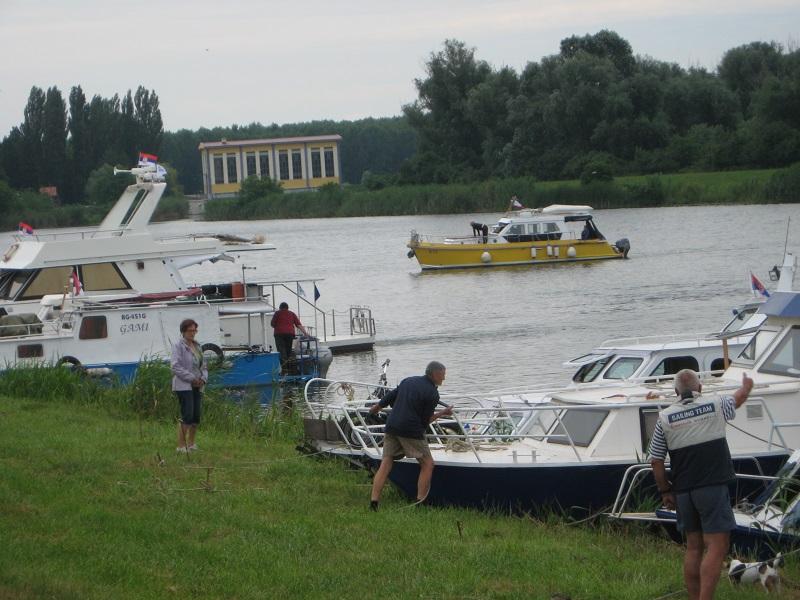 Plovila ovogodišnja regate usidrena su kraj obale Kanala u Bečeju   Foto: Vlastimir Jankov
