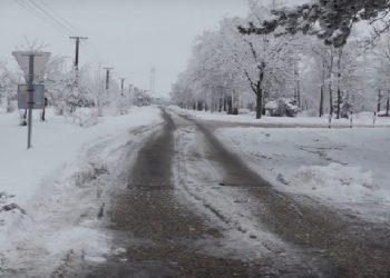 Foto: Ulica u jednom od bečejskih sela