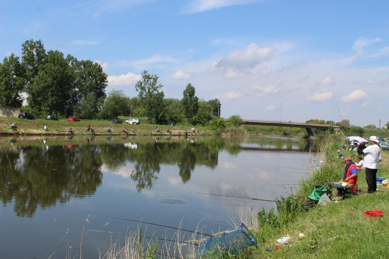 Pecaroši su 24 sata vadili, uglavnom, ribice iz Kanala | Foto: Vlastimir Jankov
