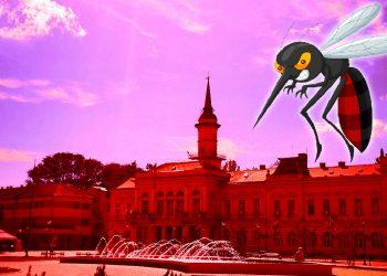 Invazija komaraca