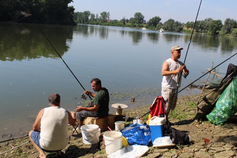 Pecaroši su imali predivan pogled na reku | Foto: Vlastimir Jankov