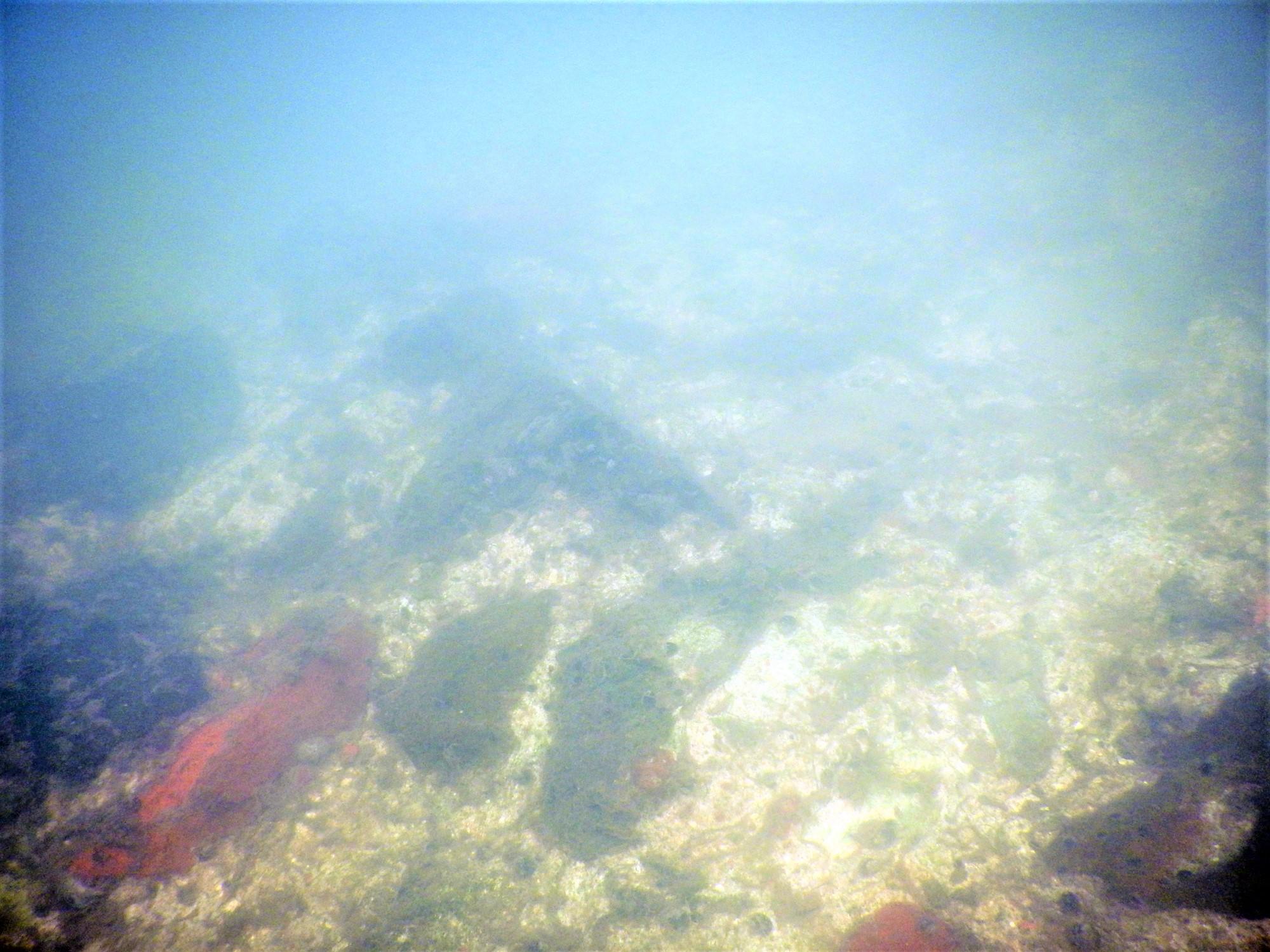Podvodni snimak lica zida tvrđave