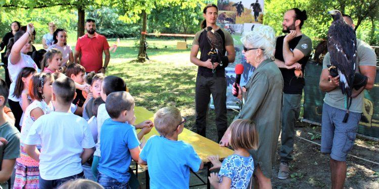 Deca su bila fascinirana jastrebom i orlom
