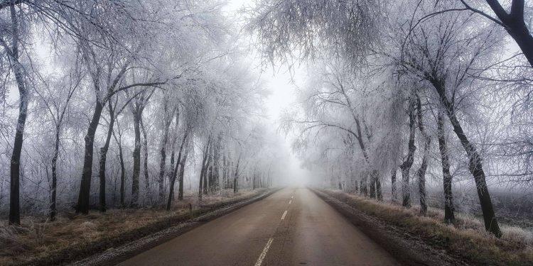 Zima inspiracija za fotografe | Foto: Daliborka Popov