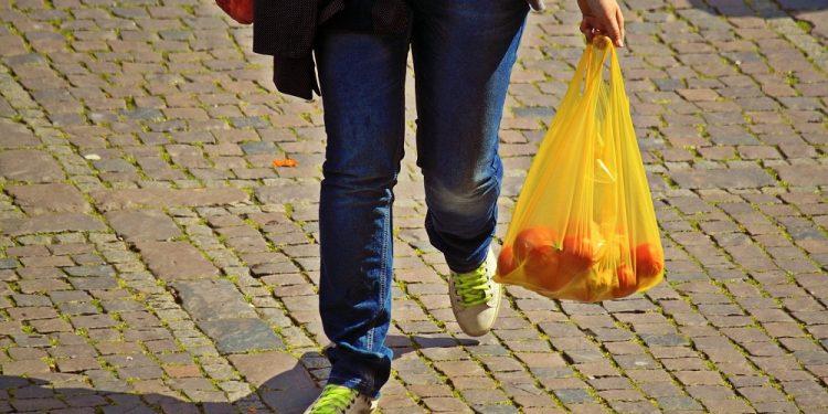 Međunarodni dan bez plastičnih kesa | Foto: Pixabay