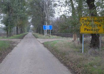 Poljanica: Ilustracija