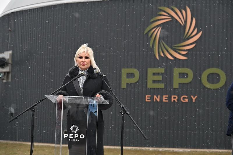 ministarka rudarstva i energetike Zorana Mihajlović